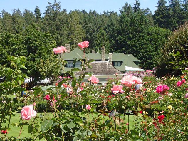 花と緑が溢れるブッチャートガーデンとアフタヌーンティー