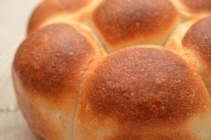 「ホシノ丹沢天然酵母」でパンを焼く 基本のパン編